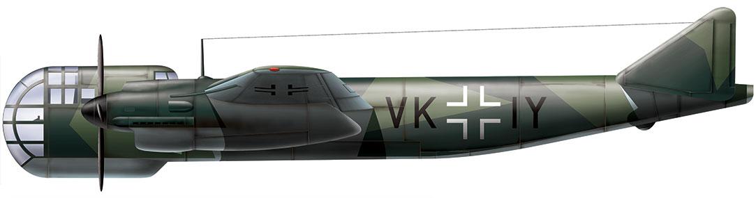 Aviation art - Dornier Do 317