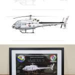 Esquilo - Eurocopter Ecureuil